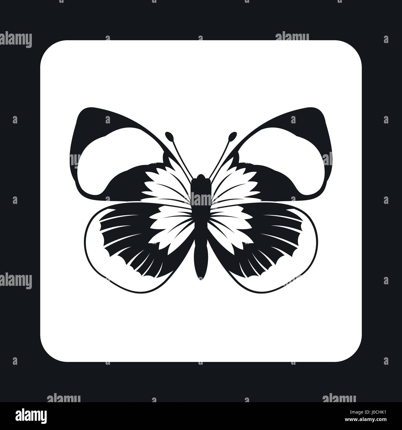 Moth Long Antennae Stockfotos & Moth Long Antennae Bilder - Alamy