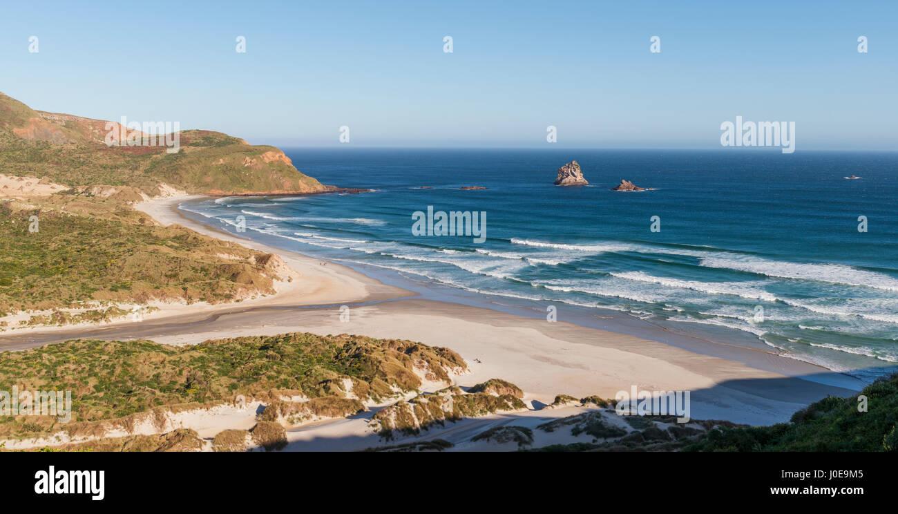 Blick auf Sandstrand, Bay Sandfly Bay, Dunedin, Otago, Otago Peninsula, Southland, Neuseeland Stockbild