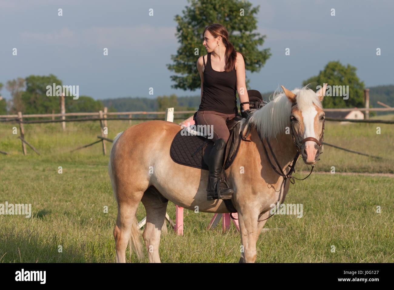 pferd fickt junge frau