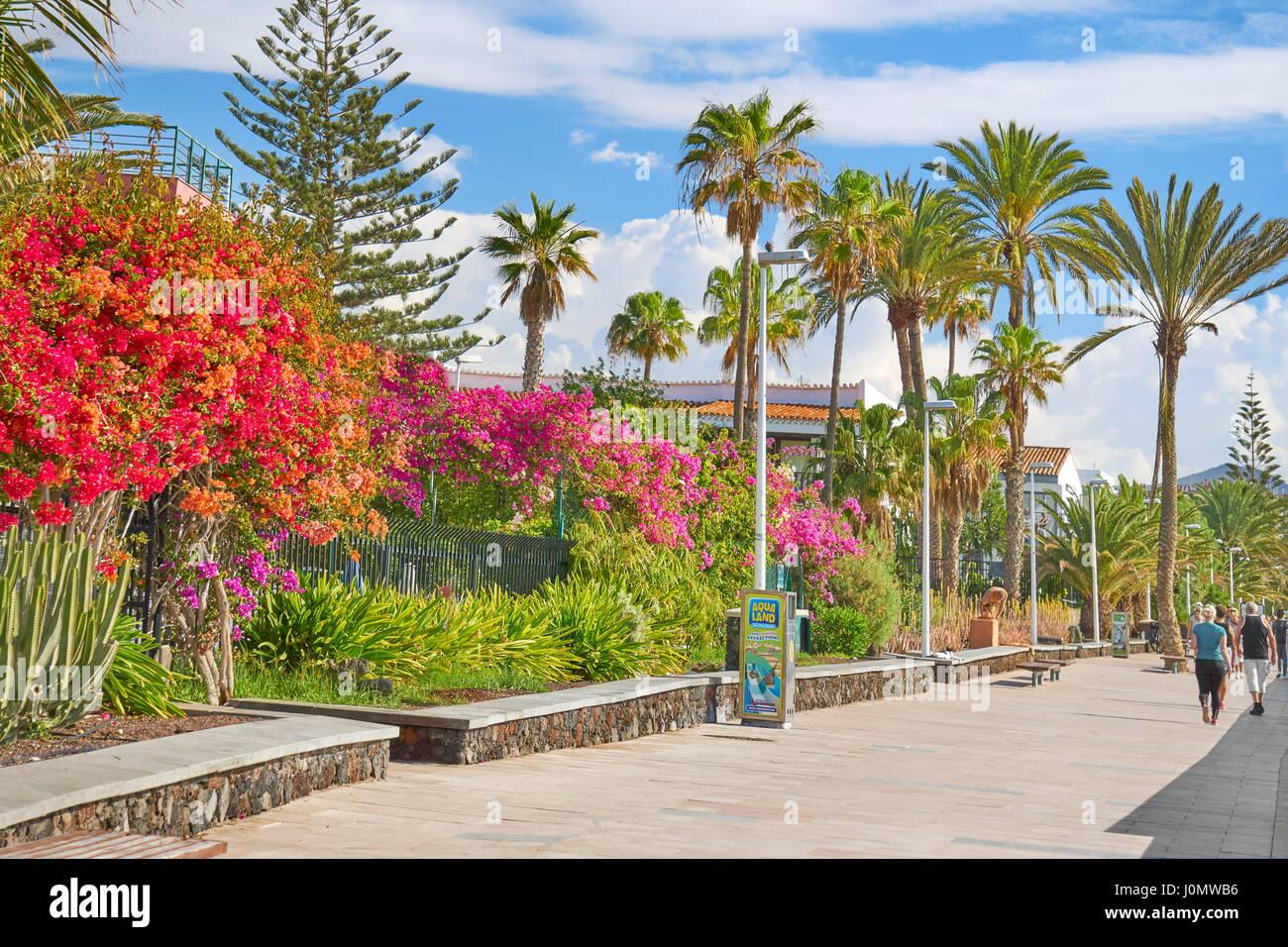 Playa de Ingles Promenade, Gran Canaria, Spanien Stockfoto