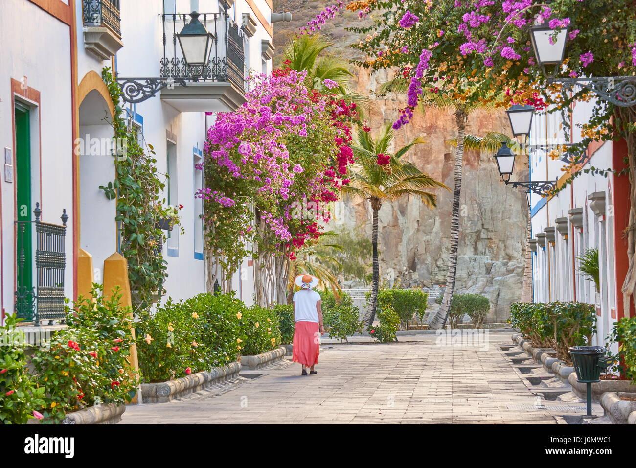 Blühende Blumen, Puerto de Mogan, Kanarische Inseln, Gran Canaria, Spanien Stockbild