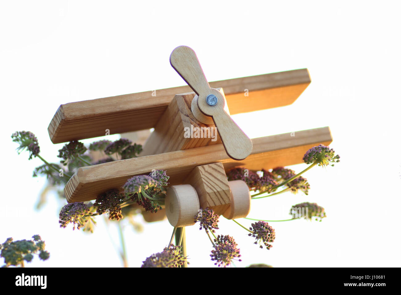 hölzernes Spielzeugflugzeug Stockbild
