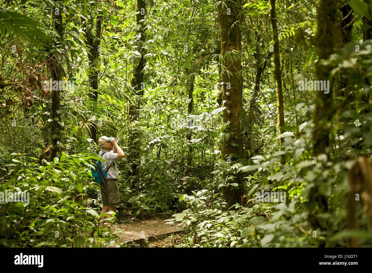 Ein männlicher wanderer blick durch ein fernglas in monteverde