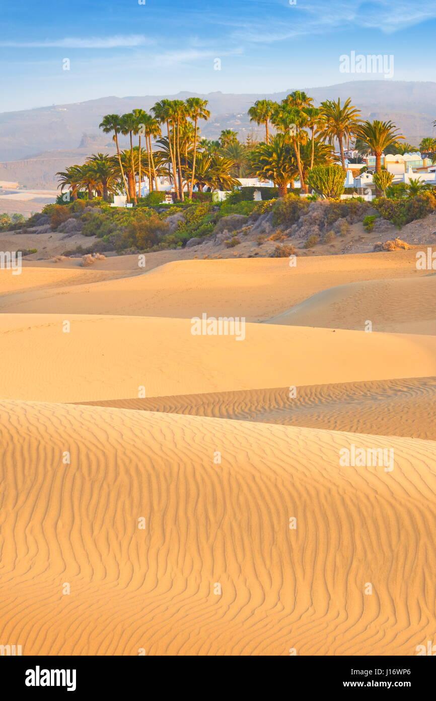 Kanarische Inseln, Gran Canaria, Maspalomas Sand Dunes National Park, Spanien Stockbild