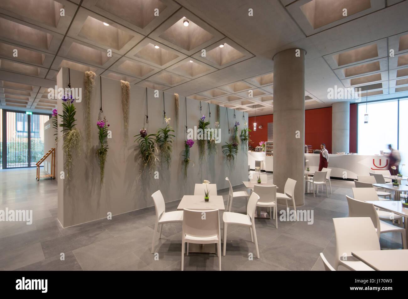 MUDEC ? Museum der Kulturen in Mailand, entworfen von David Chipperfield Architects - Café - Innenansicht Stockbild