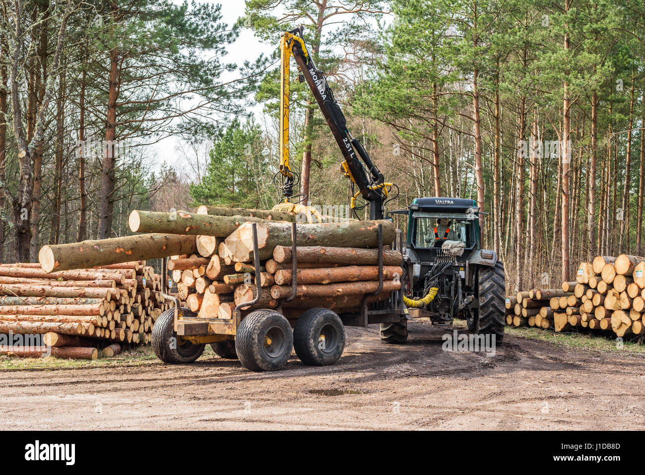 ronneby schweden 1 april 2017 dokumentation der arbeitstag im wald traktor mit holz. Black Bedroom Furniture Sets. Home Design Ideas