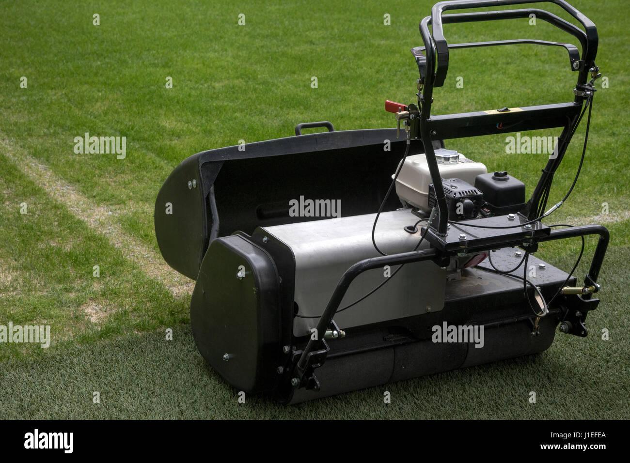 Rasenmahen Auf Einem Fussballplatz Auf Stadion Stockfoto