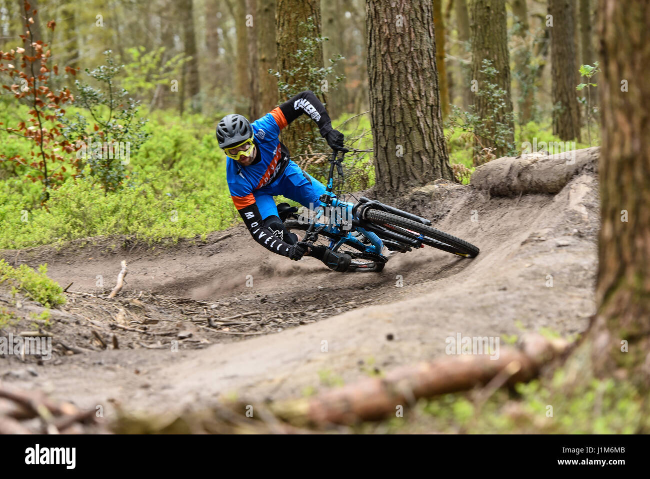 Mountainbiken in Surrey Hills - Aktion erschossen Stockbild