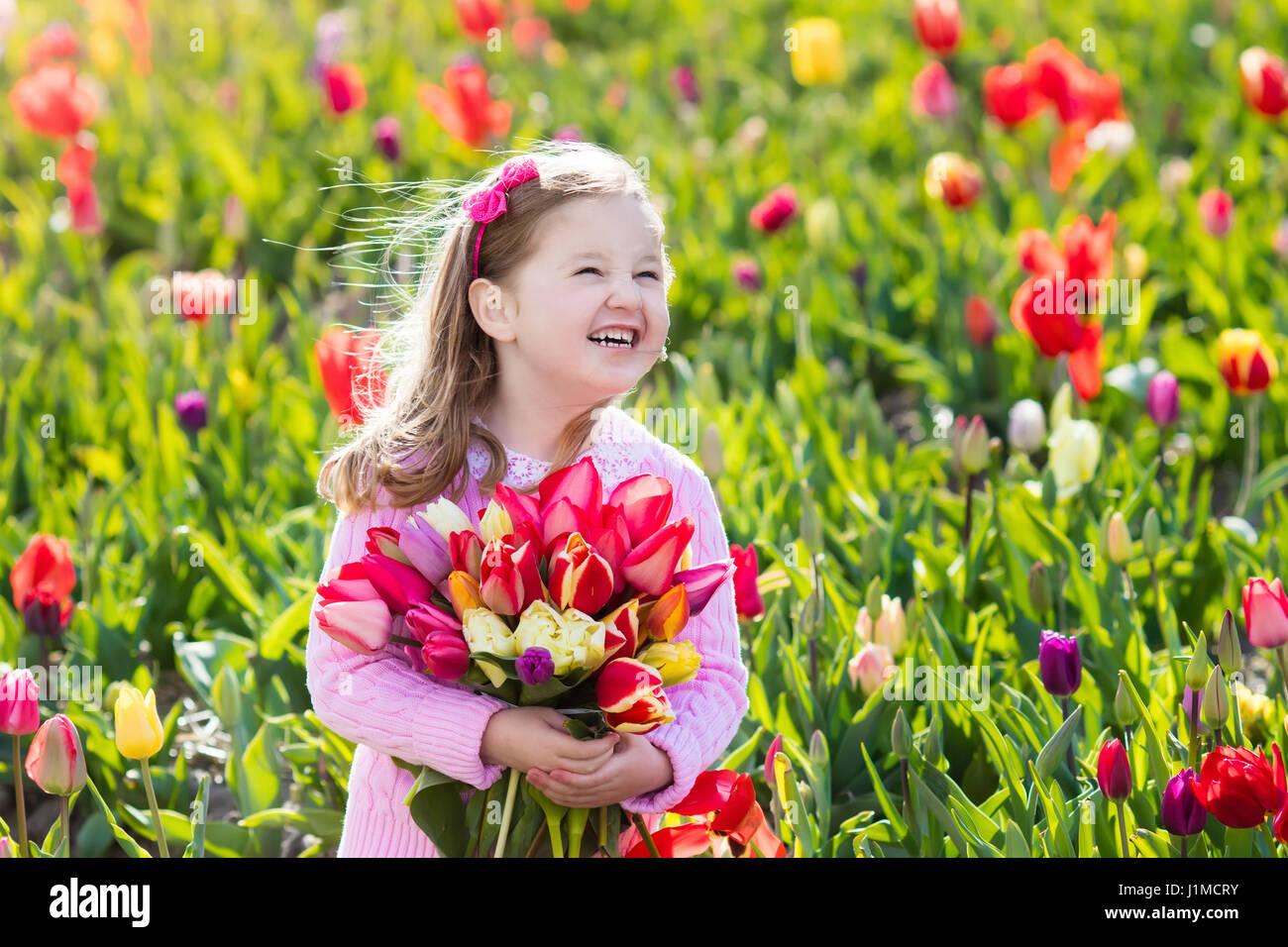 kind im tulpenfeld blume kleines m dchen schneiden frische tulpen im sonnigen garten kind mit. Black Bedroom Furniture Sets. Home Design Ideas