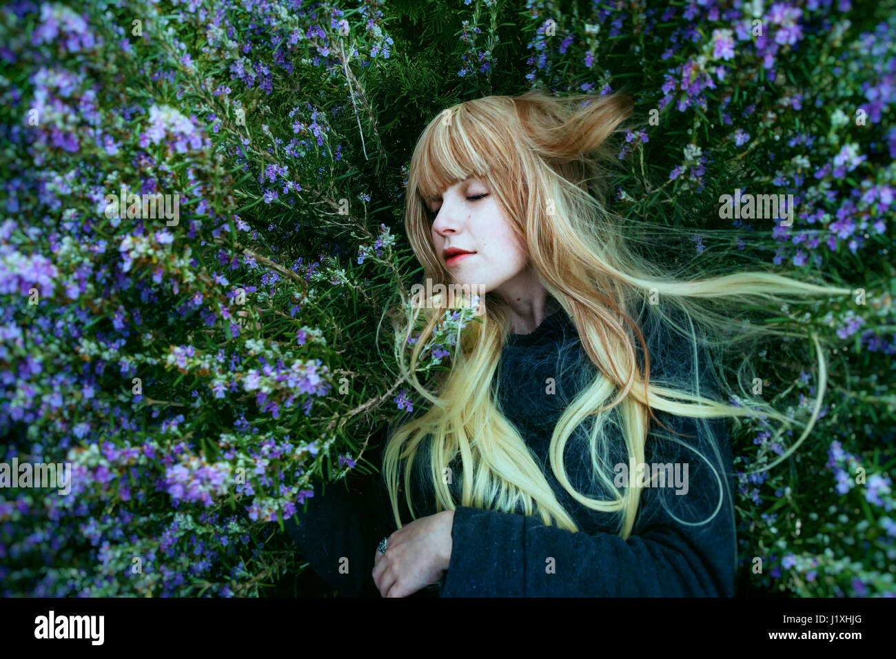 Junge Frau in einem Rosmarin-Busch liegend Stockbild