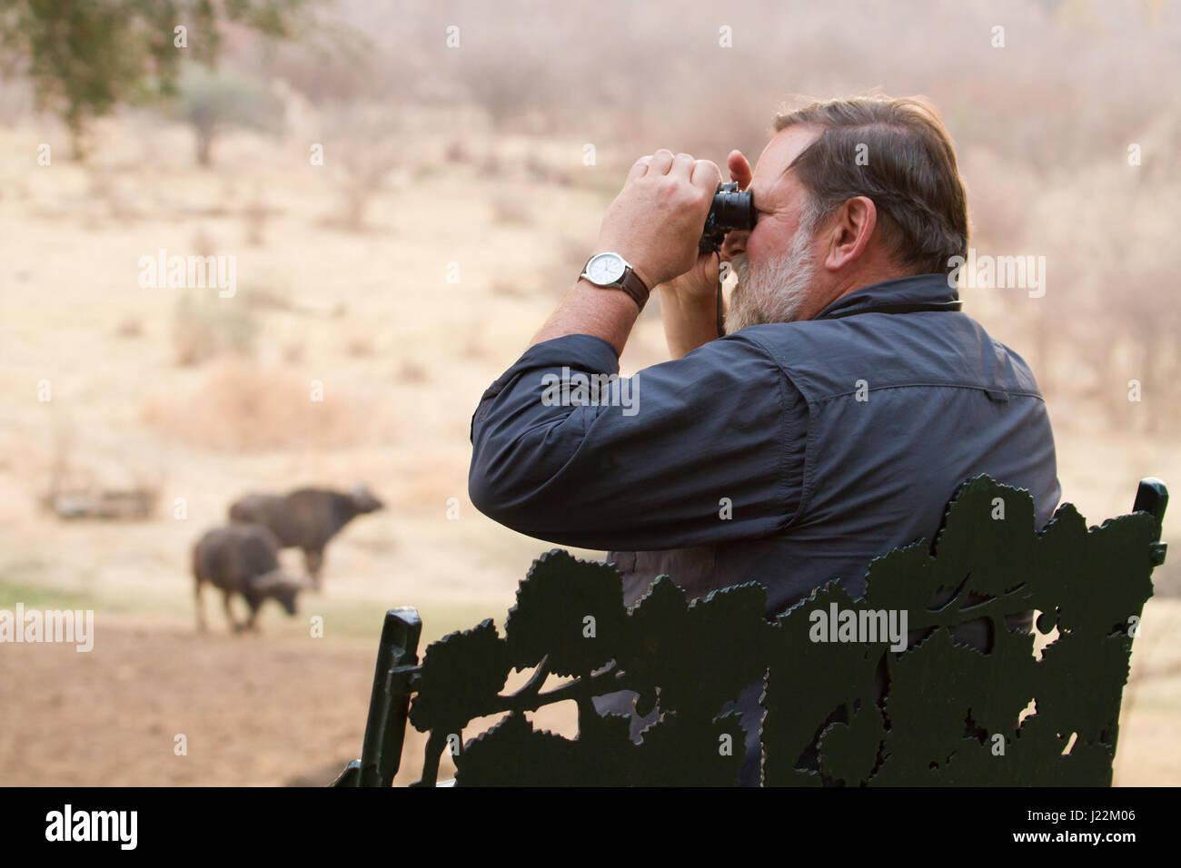 Mann afrikanische büffel mit dem fernglas in der nakavango