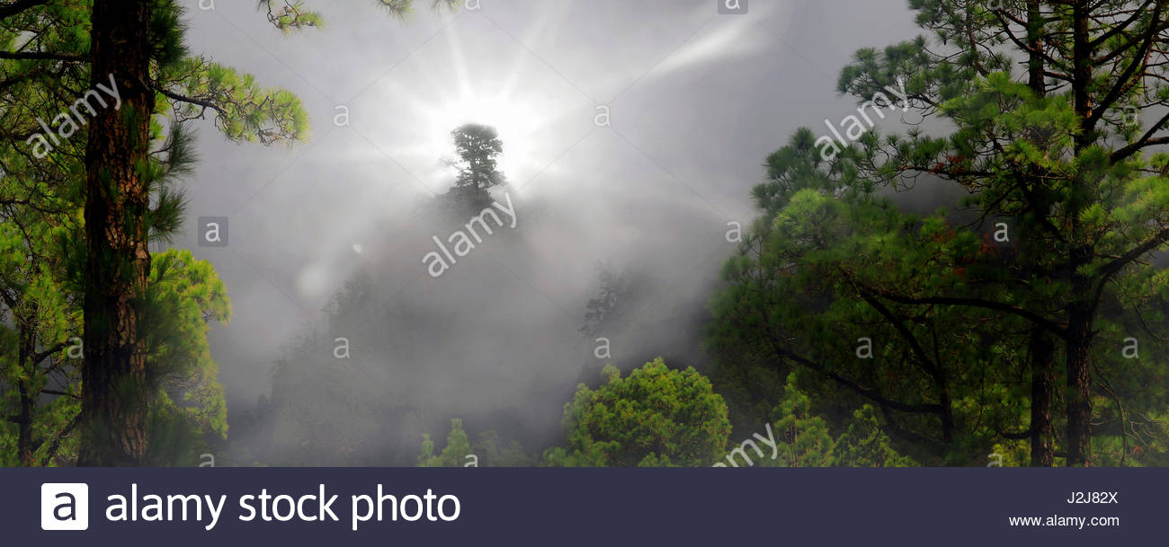Insel La Palma, der Caldera de Taburiente Mit Sonnenstrahlen, Kanaren, Spanien, Europa, Panoramaaufnahme Stockbild