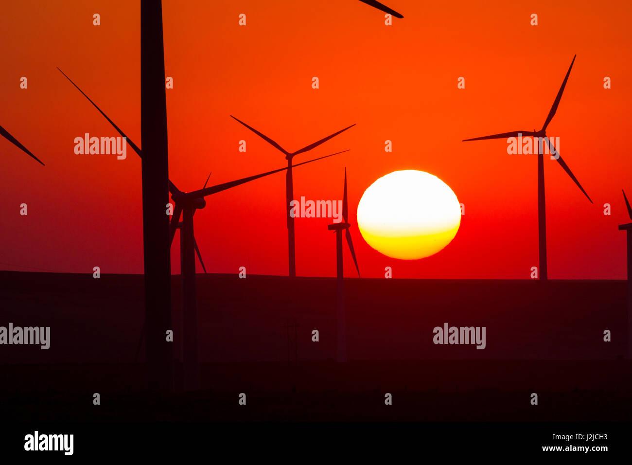 USA, Washington, Walla Walla County. Windmühlen in der südwestlichen Ecke des Countys. Stateline Wind-Projekt. Stockfoto