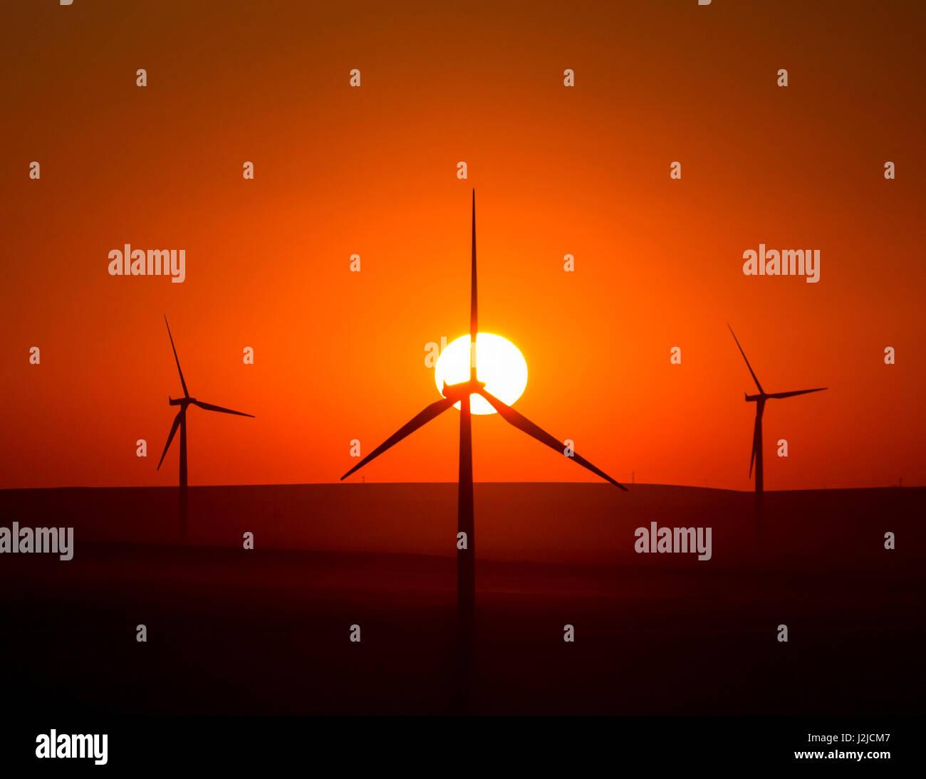 USA, Washington State, Walla Walla County. Windmühlen in der südwestlichen Ecke des Countys. Stateline Wind-Projekt. Stockfoto