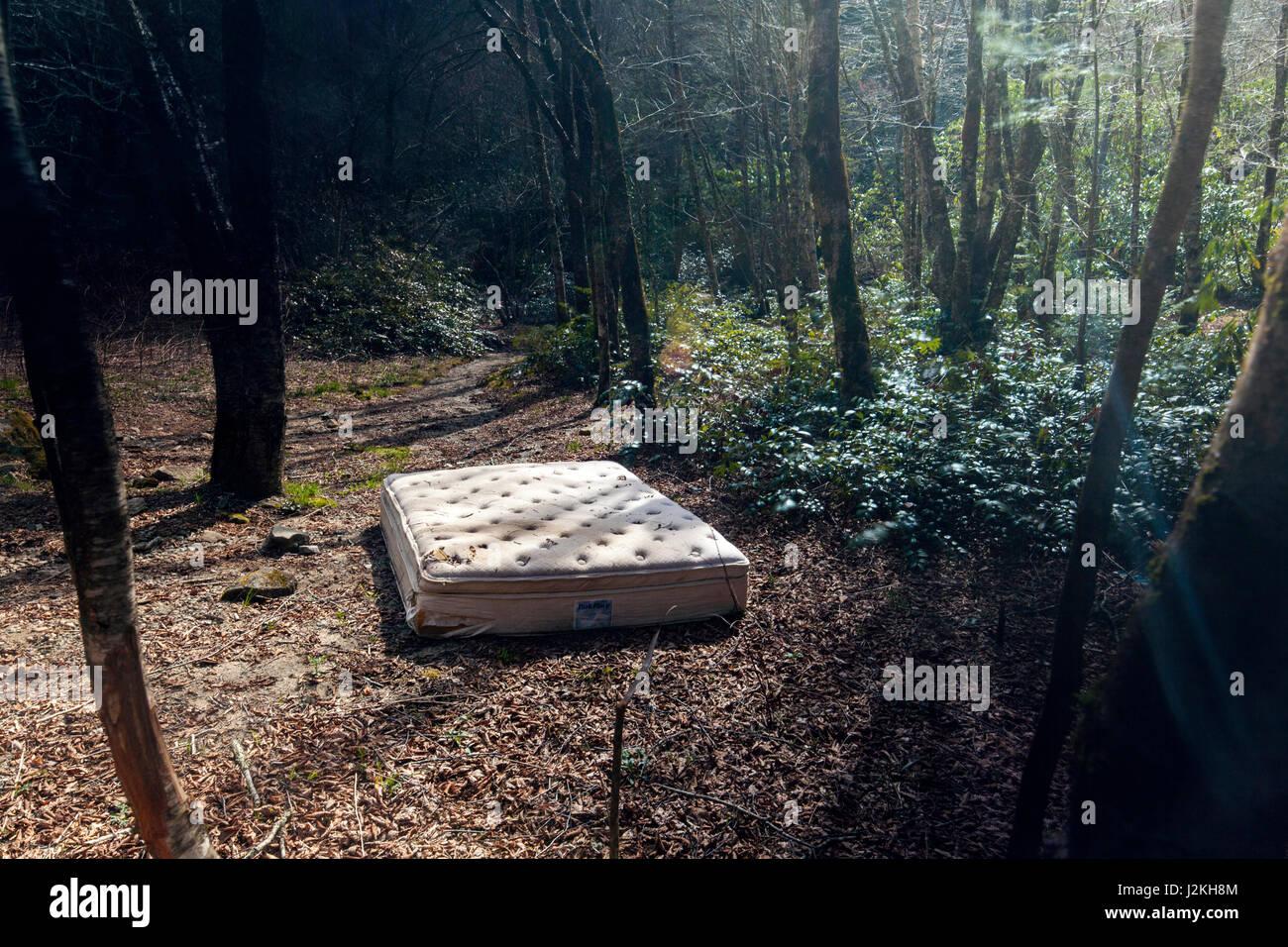 verlassene matratze im wald pisgah national forest in der n he von brevard north carolina. Black Bedroom Furniture Sets. Home Design Ideas