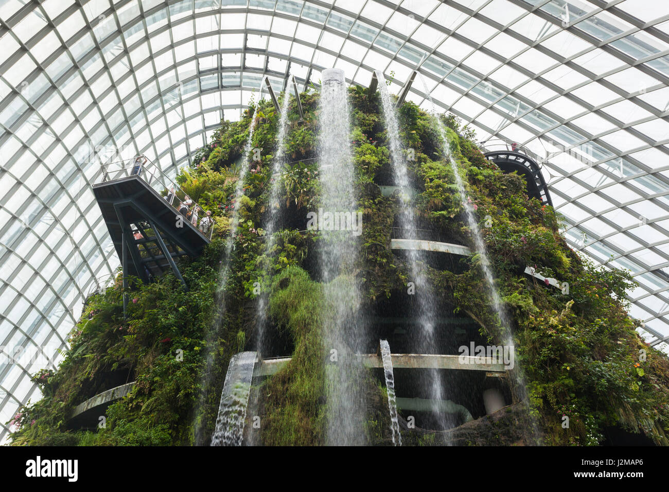 Elevated View Of Gardens Bay Indoor Stockfotos & Elevated View Of ...