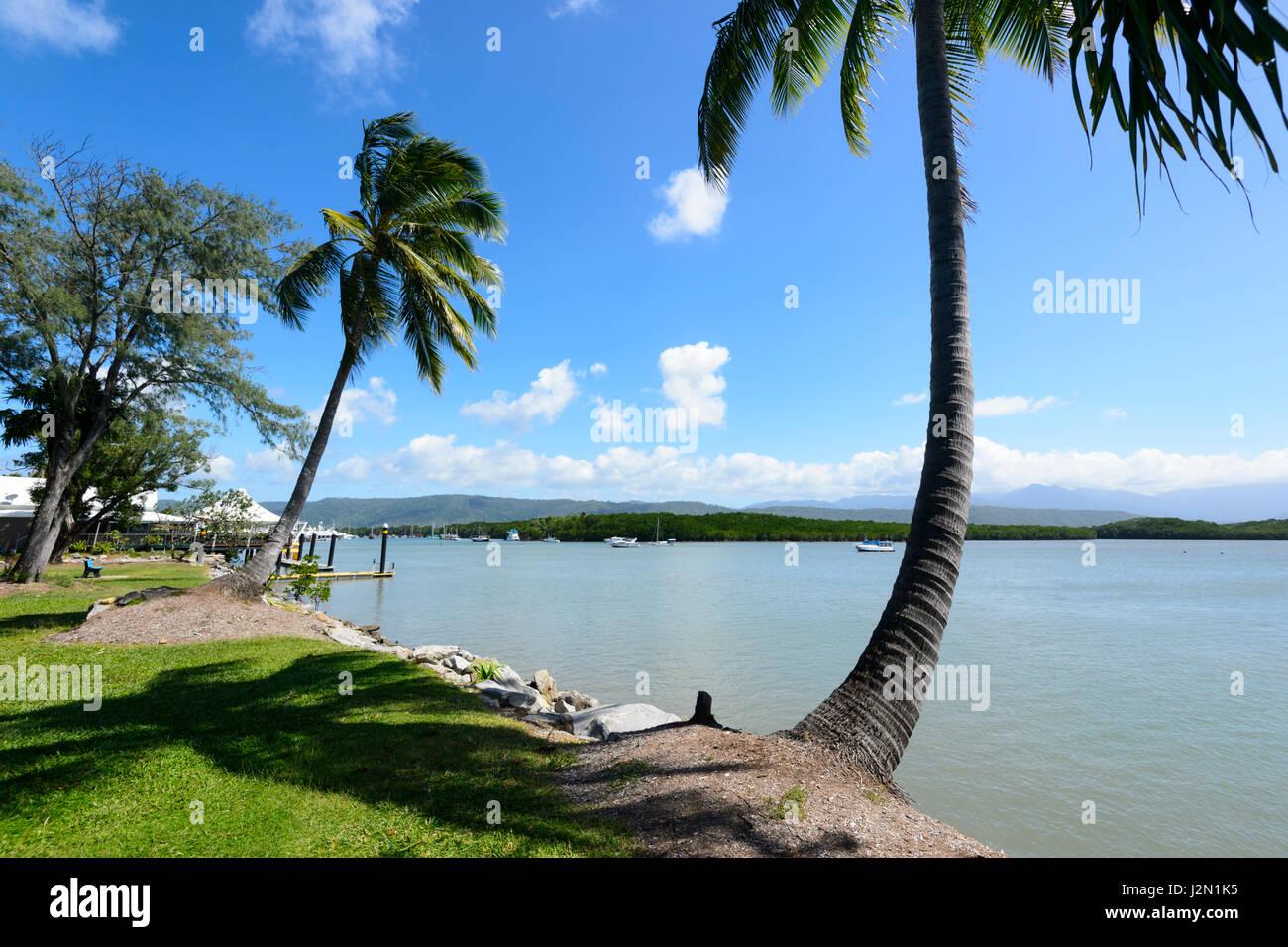 Malerische Aussicht auf Port Douglas, Far North Queensland, FNQ, QLD, Australien Stockbild