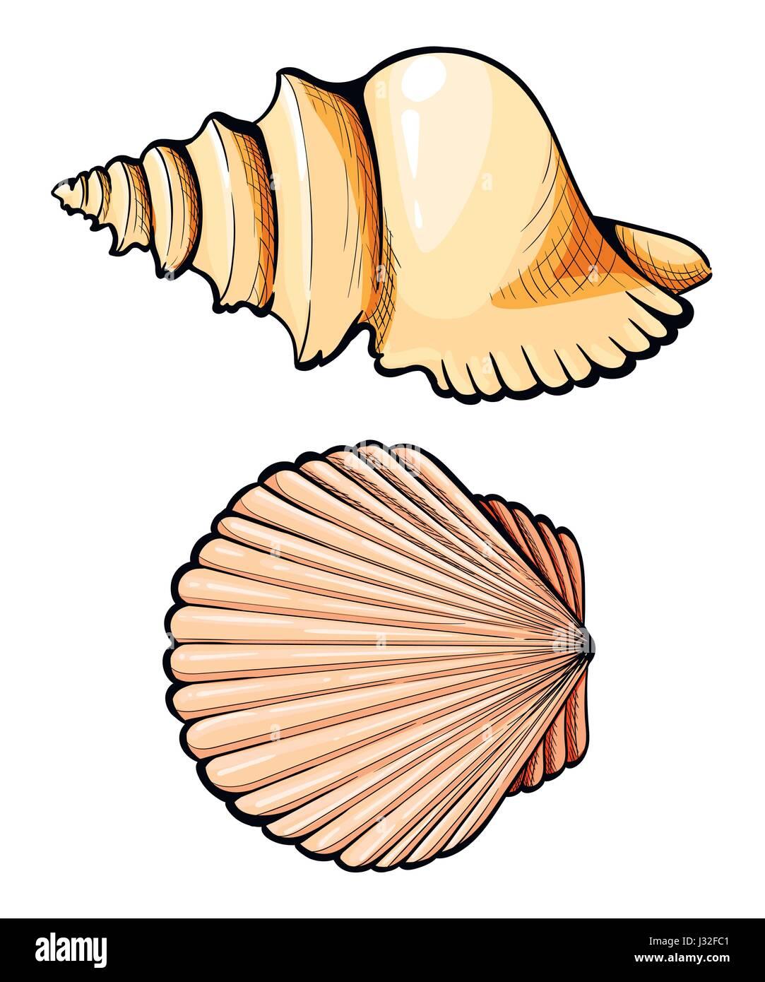 Hand Zu Zeichnen Set Muschel Koralle Krabben Garnelen Und
