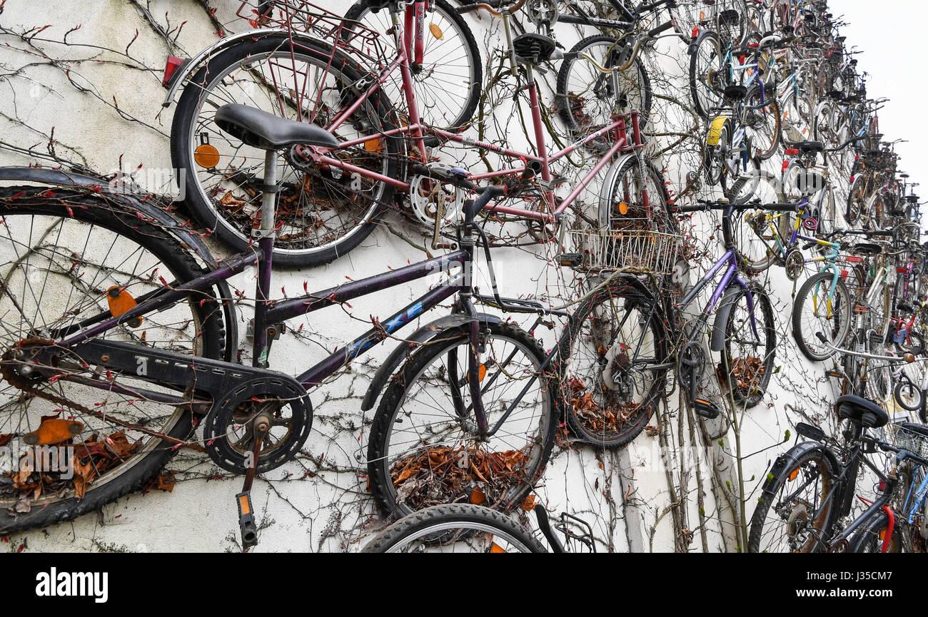 Altlandsberg Deutschland 28 April 2017 Alte Fahrräder Hängen An