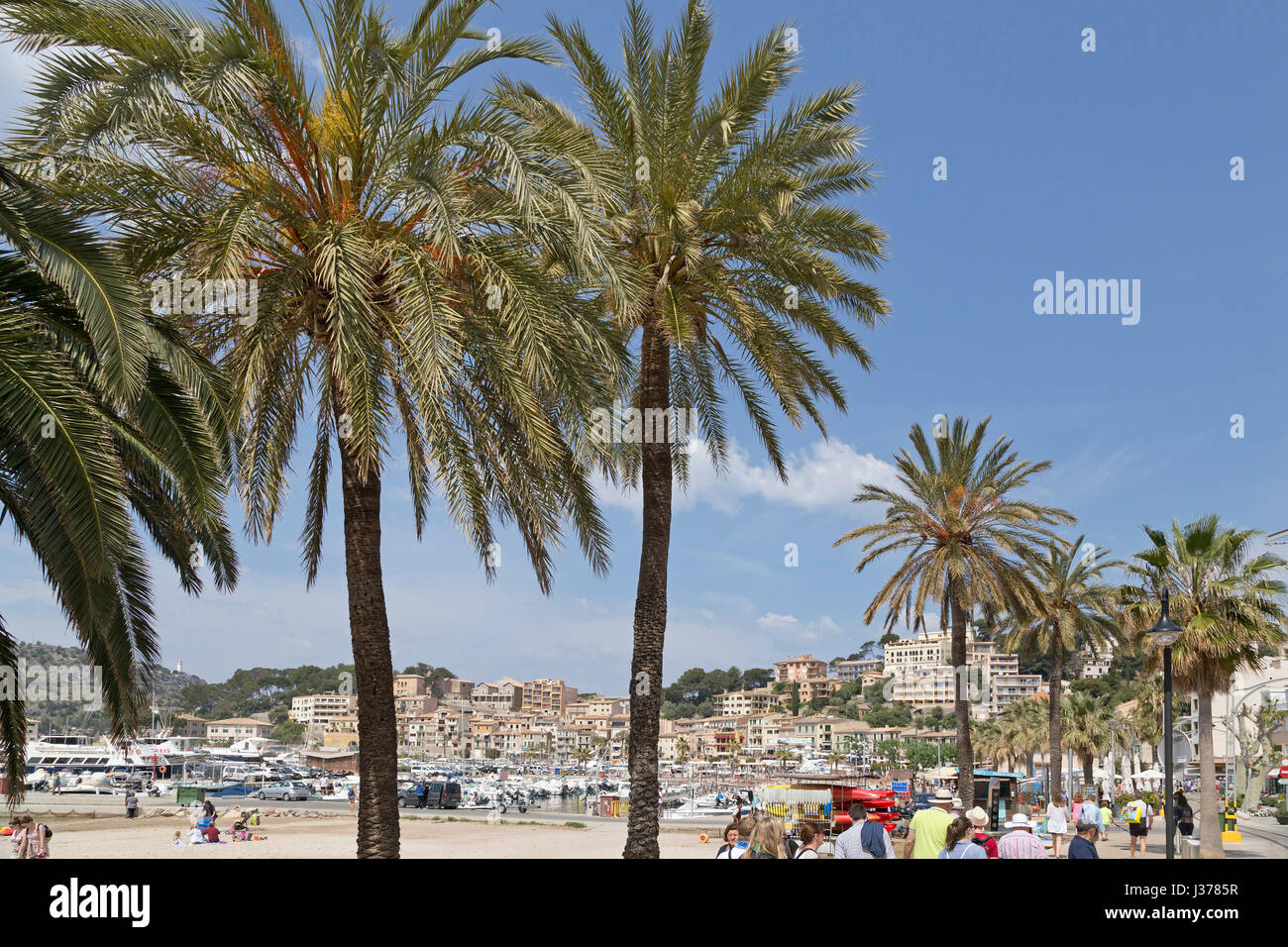 direkt am Meer in Port de Sóller, Mallorca, Spanien Stockbild