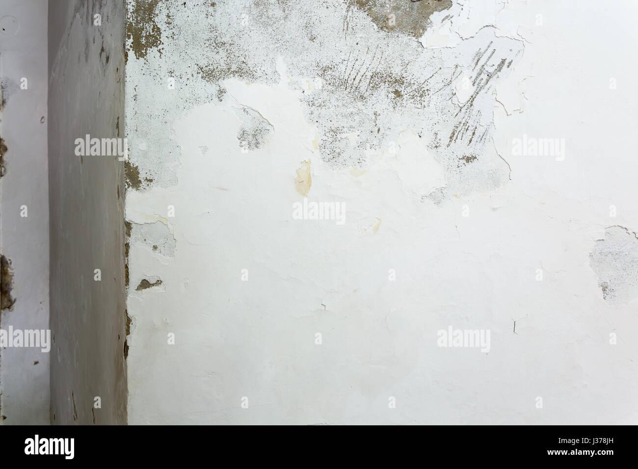 Delightful Peeling Und Abplatzungen Malen Durch Aufsteigende Feuchtigkeit An Innenwand