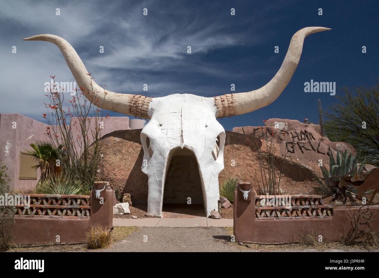 longhorn skull stockfotos longhorn skull bilder alamy. Black Bedroom Furniture Sets. Home Design Ideas