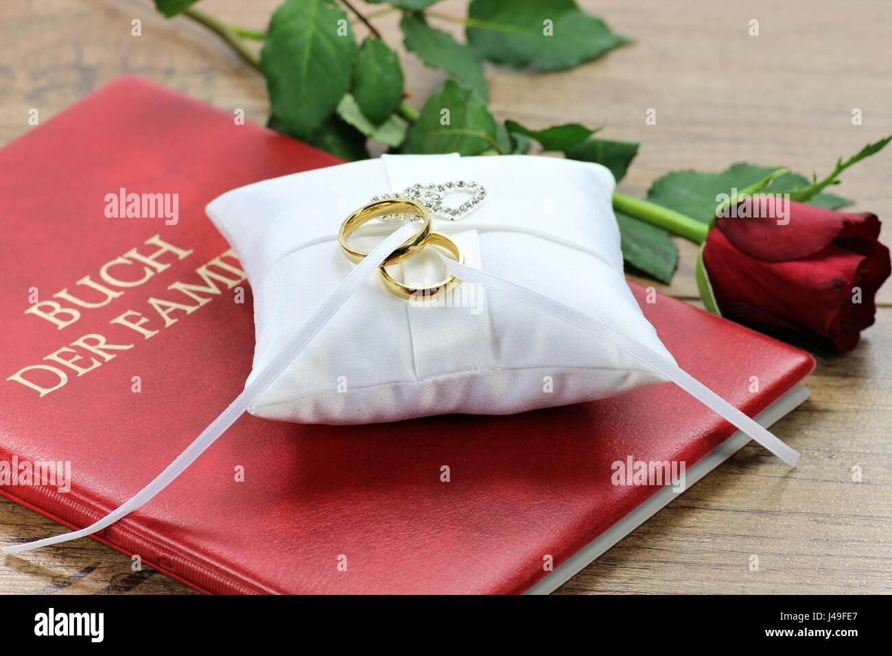 Goldene Hochzeit Ringe Auf Weißem Ringträger Kissen