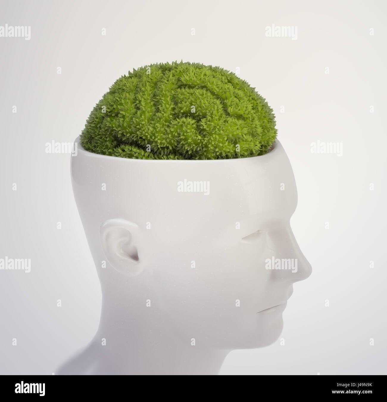 Pflanze, geformt wie ein menschliches Gehirn - Intelligenz und Gedächtnis Konzept 3D illustration Stockbild