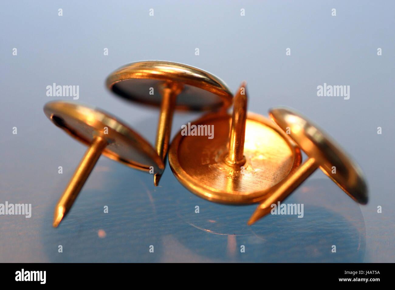 Reinagel Stockfotos und  bilder Kaufen   Alamy