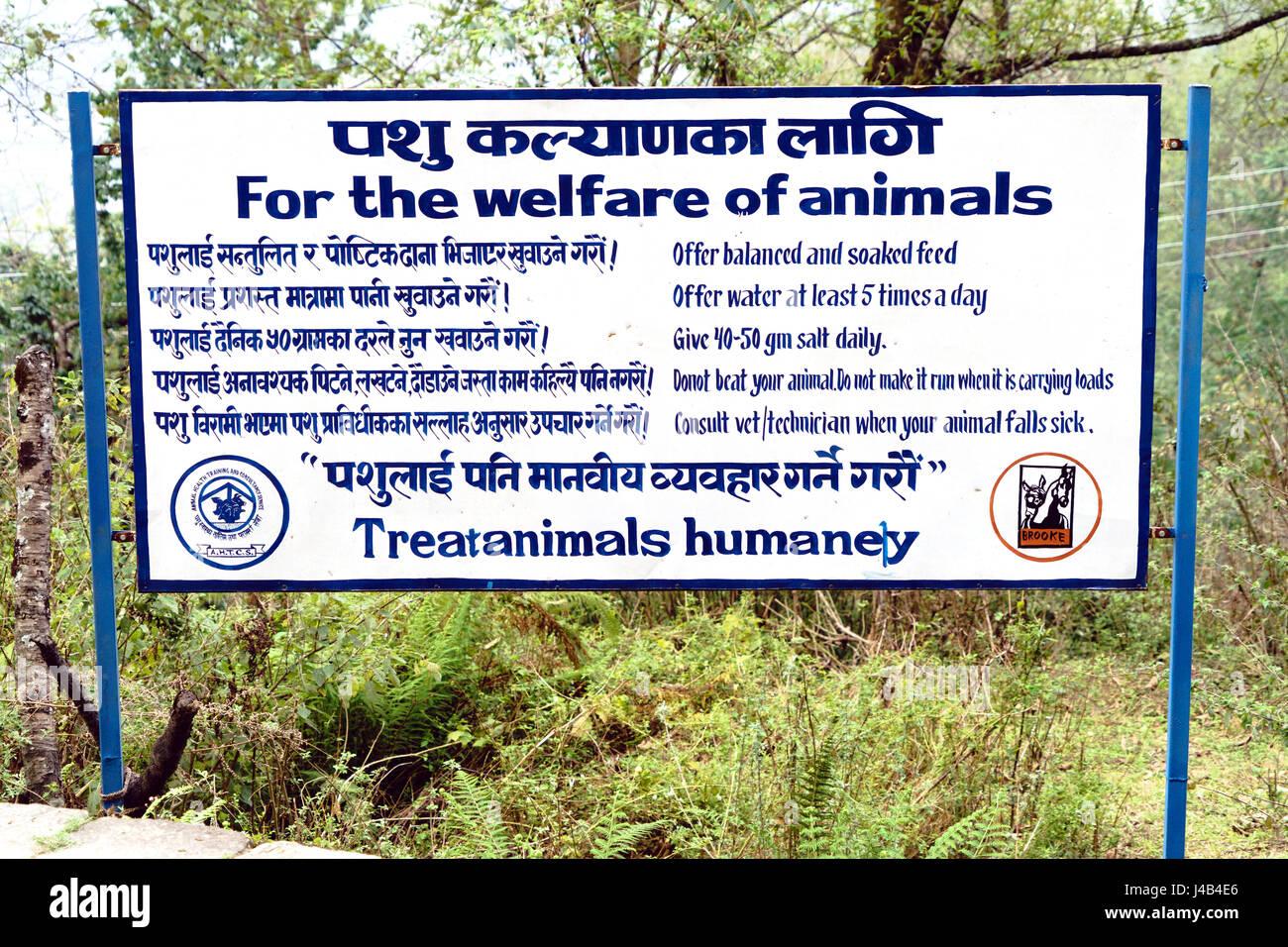 Zeichen der Förderung der Behandlung der Tiere, die in Nepal. Stockbild