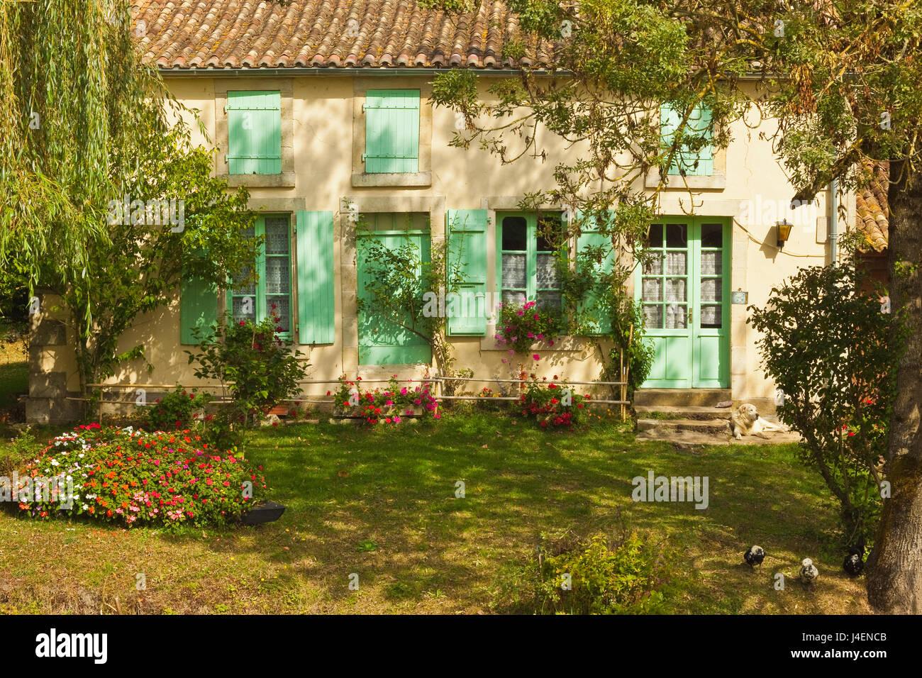 Haus mit typischen regionalen grünen Fensterläden in Marais Poitevin (grüne Venedig) Feuchtgebiete, Stockbild