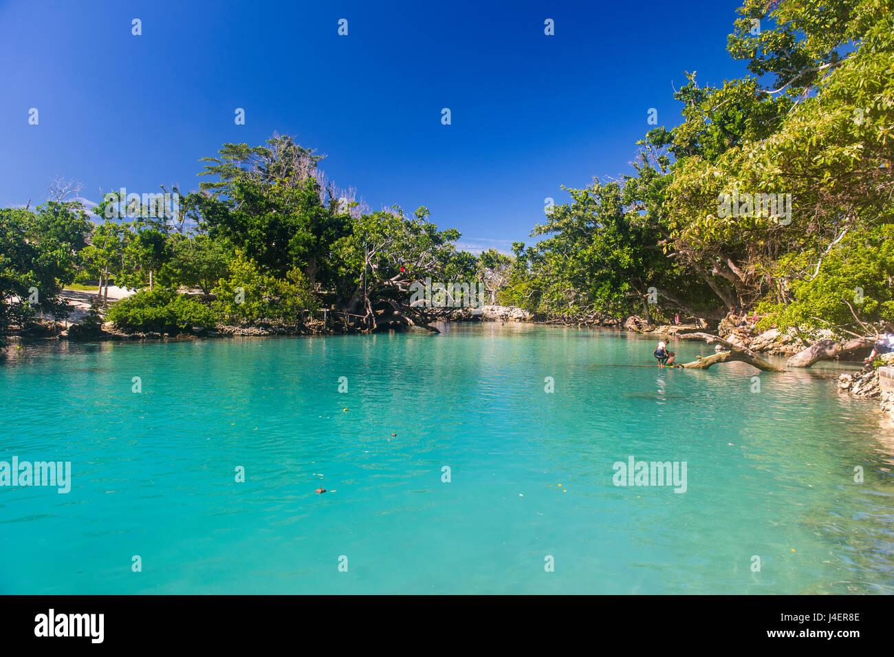 Türkisfarbene Wasser in der blauen Lagune, Efate, Vanuatu, Pazifik Stockbild