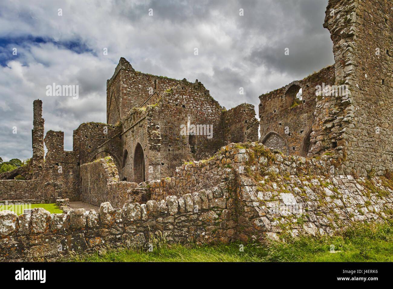 Die Ruinen der Hore Abbey, in der Nähe von den Ruinen der Rock of Cashel, Cashel, County Tipperary, Munster, Stockbild