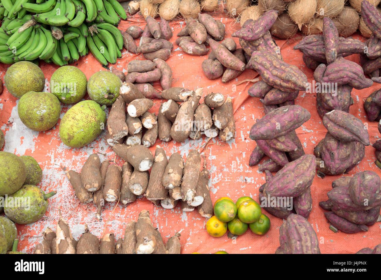 Taro (Colocasia Esculenta), Brotfrucht (Artocarpus Altilis) und süsse Kartoffel zum Verkauf im Markt, Stone Stockbild