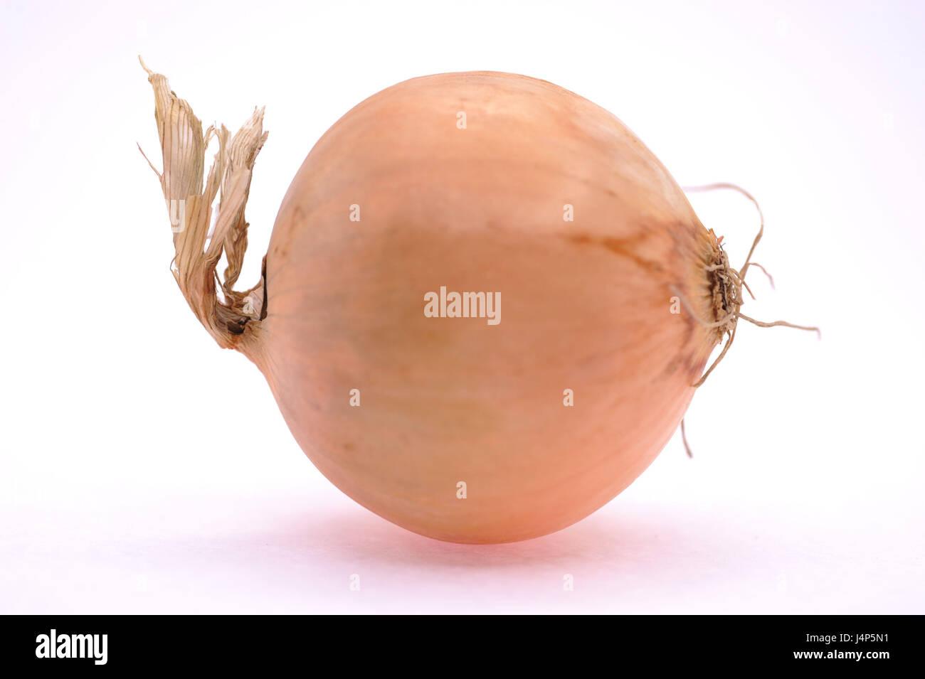 Zwiebel, Allium Cepa, Freis Platte, Stockbild