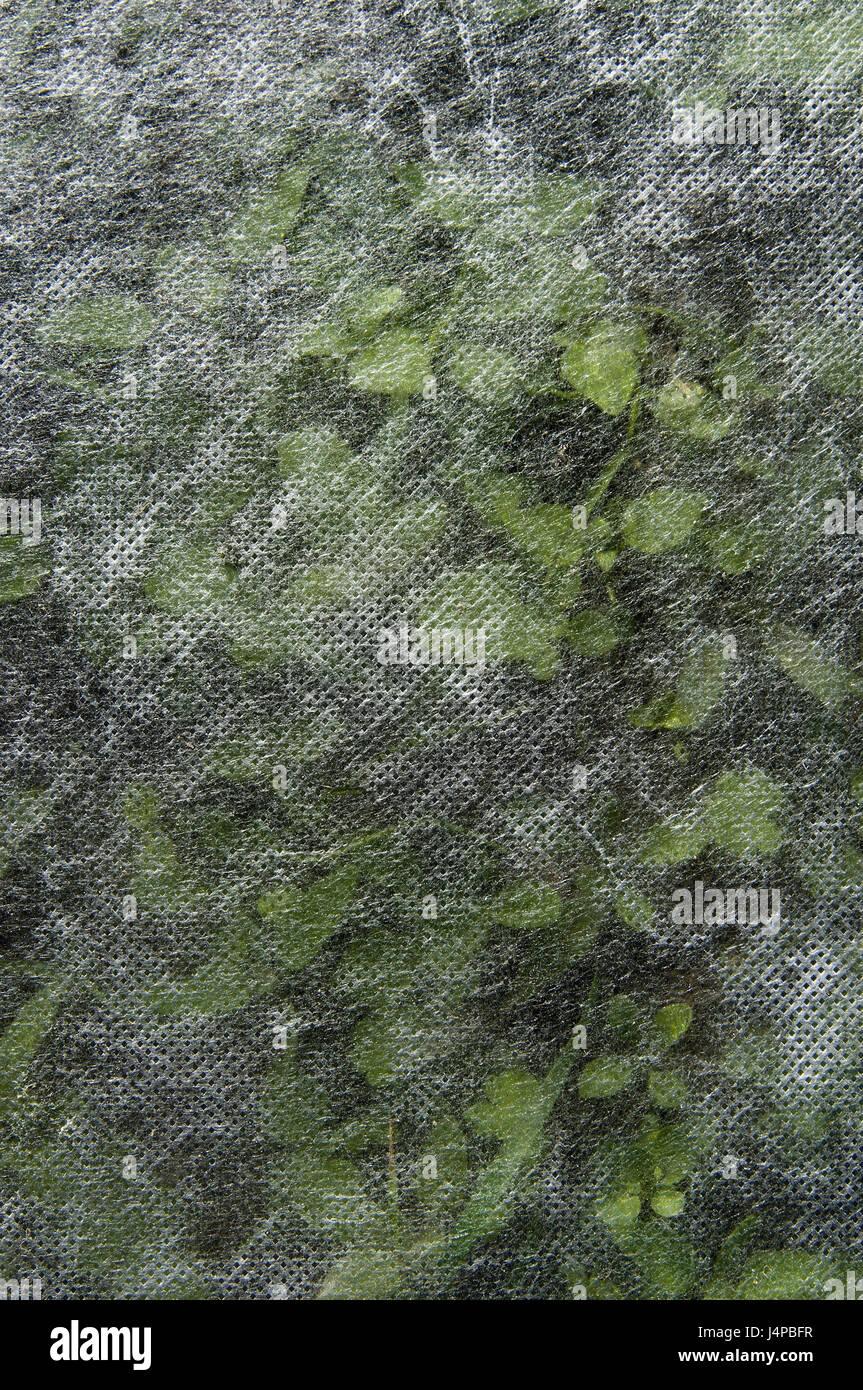 Garten, Pflanzen, Abdeckung, Patch, Vlies,