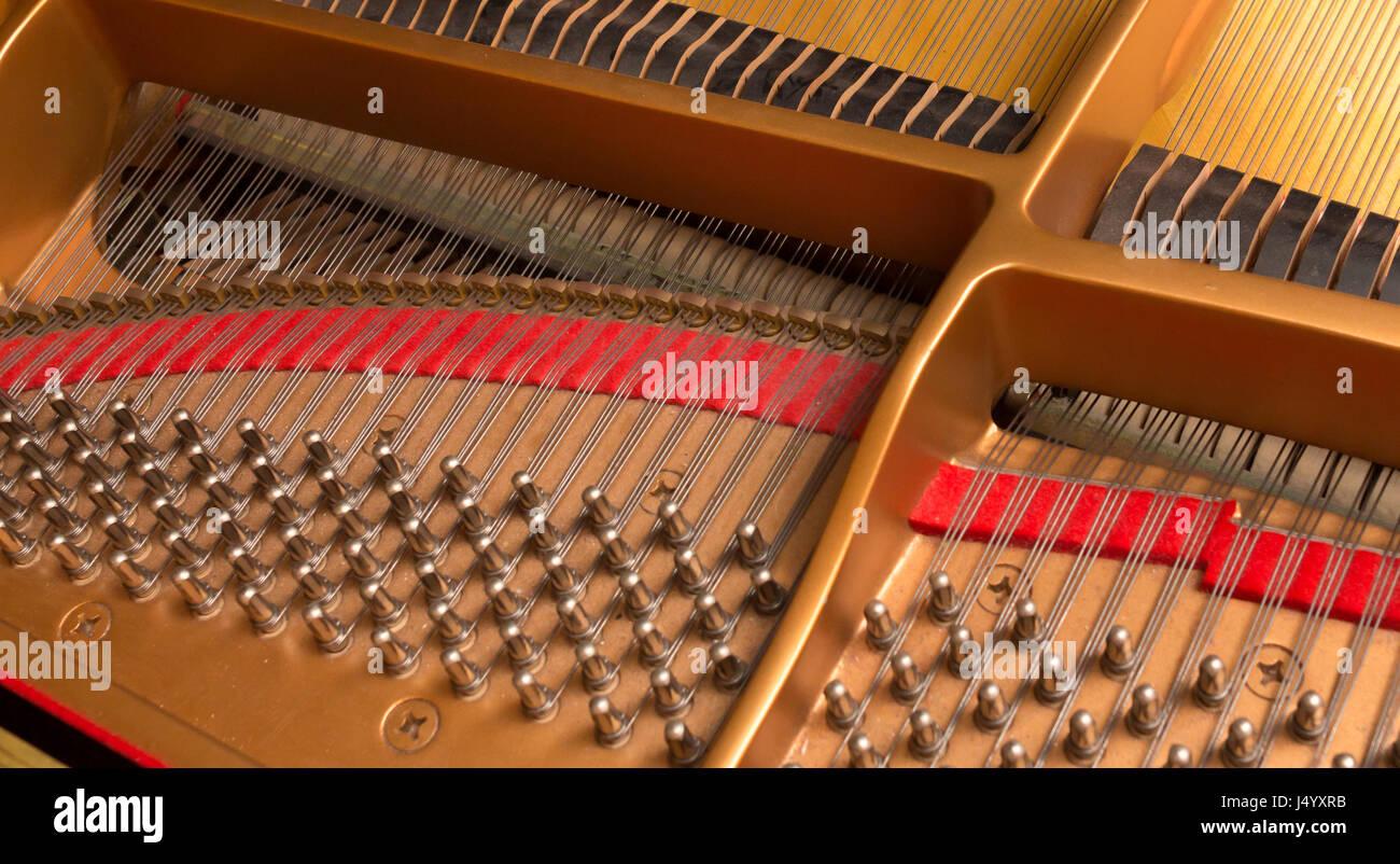Konzert piano Stimmwirbel und Dämpfer Köpfe, hohes Ansehen. Stockbild