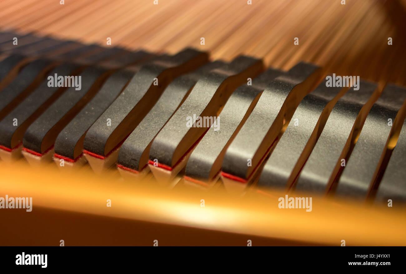 Nahaufnahme einer Gruppe von Saiten eines akustischen Flügels Dämpfer Kopf. Stockbild