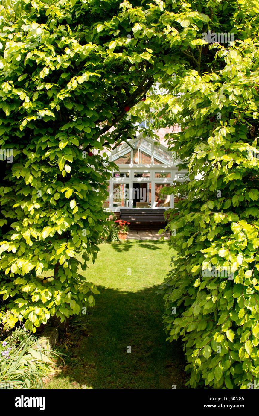 arch hedge stockfotos arch hedge bilder alamy. Black Bedroom Furniture Sets. Home Design Ideas