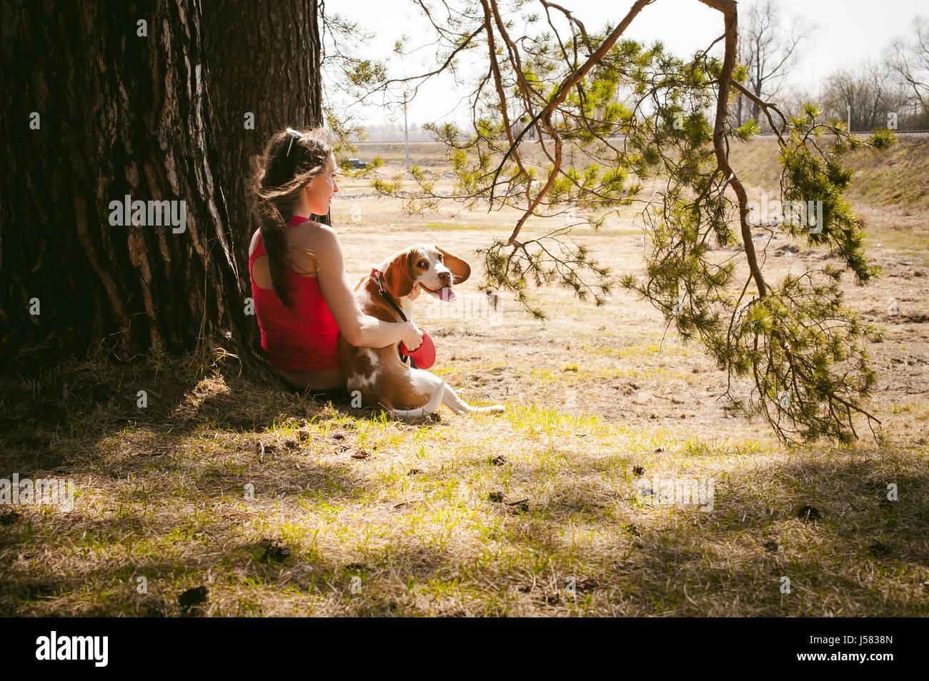 Junge Haustier Hunderassen Beagle spazieren im Park im Freien. Frau sorgfältig Welpen, Theateraufführungen Stockbild
