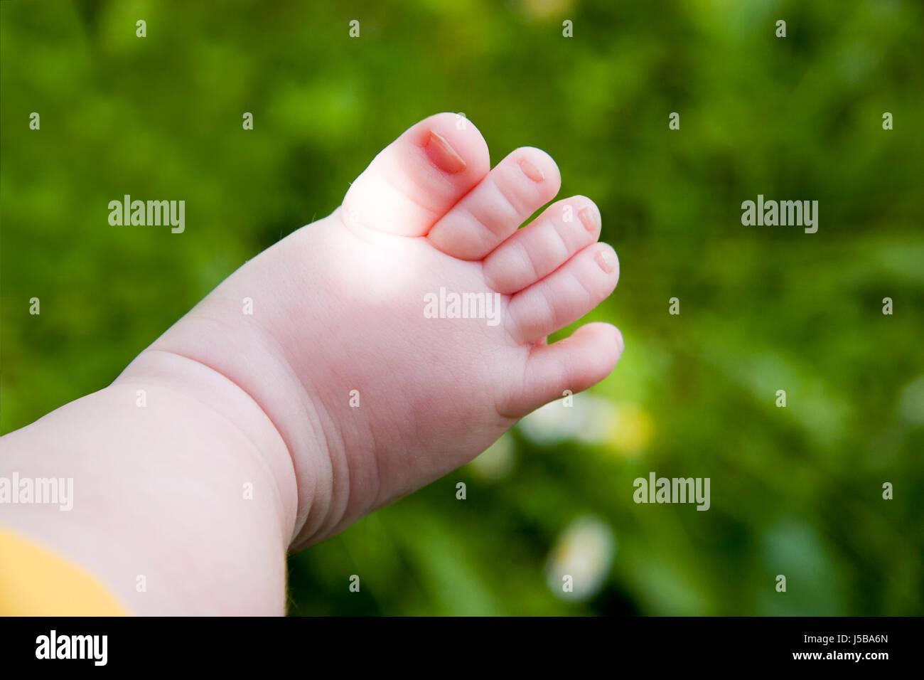 babyspeck stockfotos babyspeck bilder alamy. Black Bedroom Furniture Sets. Home Design Ideas