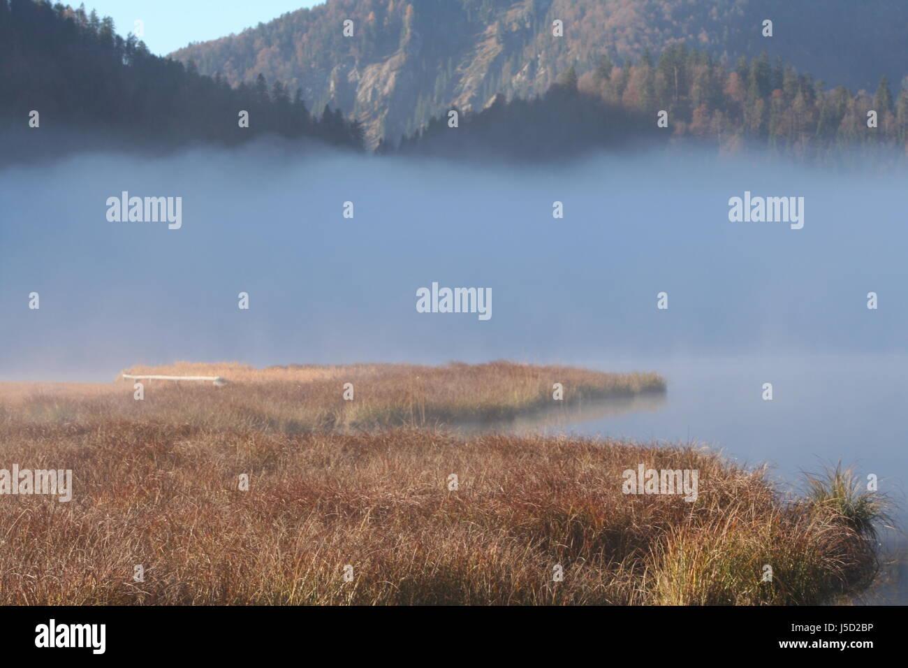 Nebelsee Stockbild