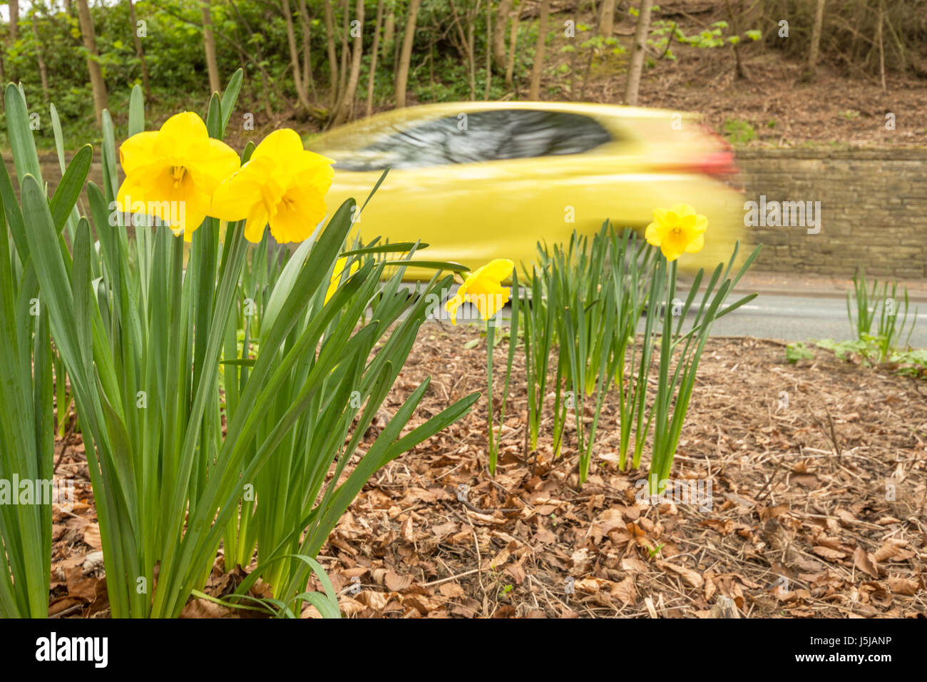 Ein gelbes Auto Gefahren schnell und Beschleunigung Stockbild
