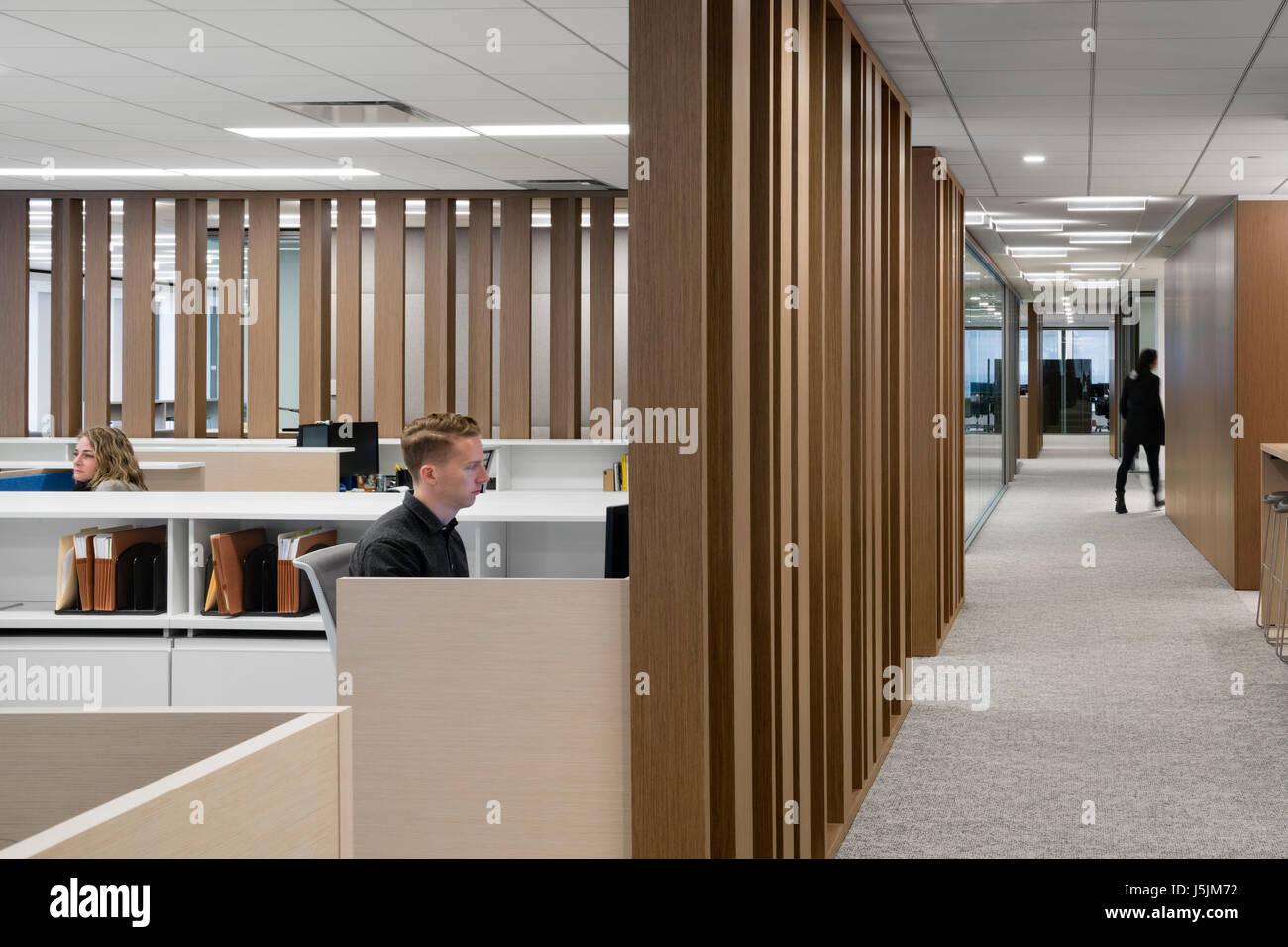 Mitarbeiter An Ihrem Arbeitsplatz Geteilt Durch Holz Sichtschutz