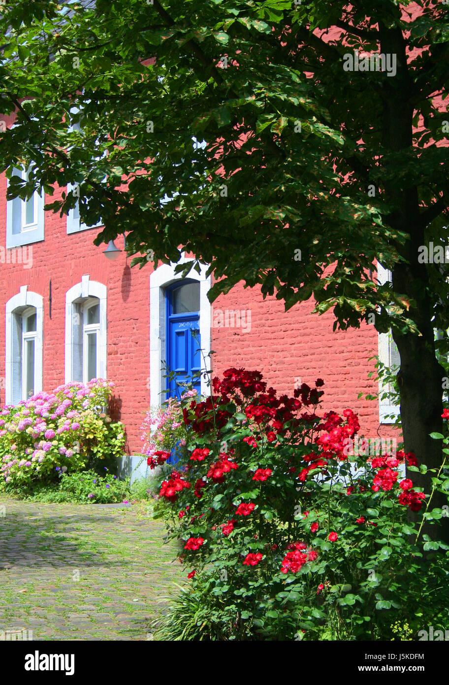 Blaues Haus Haus Wohnhaus Wohnhaus Bauen Baum Grüne Fenster