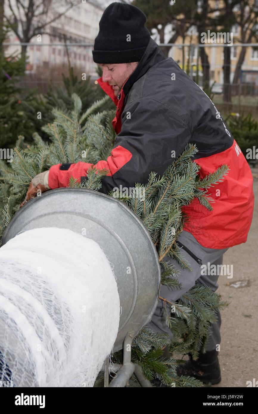 Weihnachtsbaum-Verkauf Stockfoto