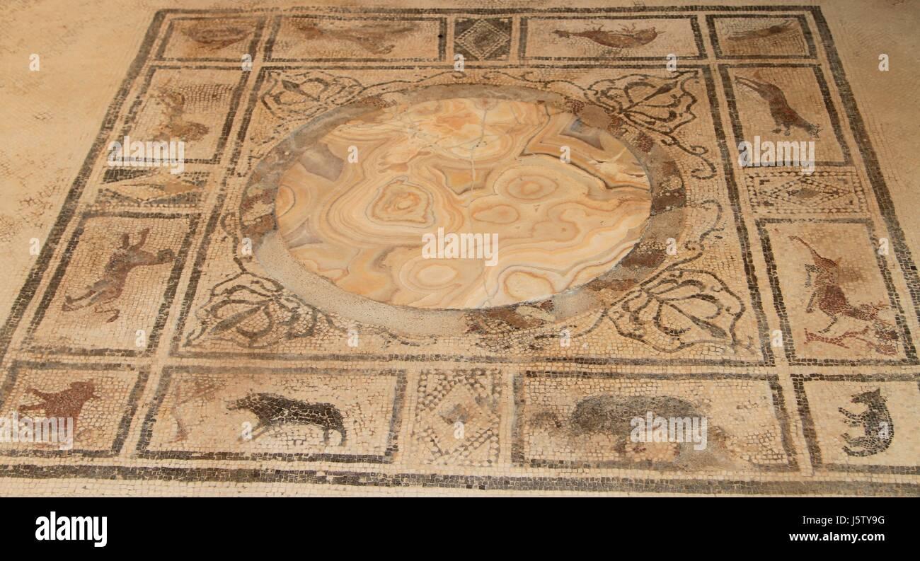 Roman floor tiles stockfotos roman floor tiles bilder alamy dekorative fliesen und mosaik pompeji kampanien italien stockbild dailygadgetfo Image collections
