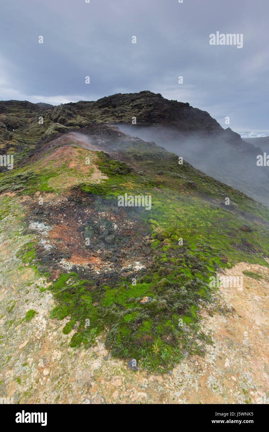 Fumarole auf Leirhnjukur / Leirhnjúkur, Lava Feld in der Krafla-Caldera im Winter, Norðurland Eystra / Stockbild
