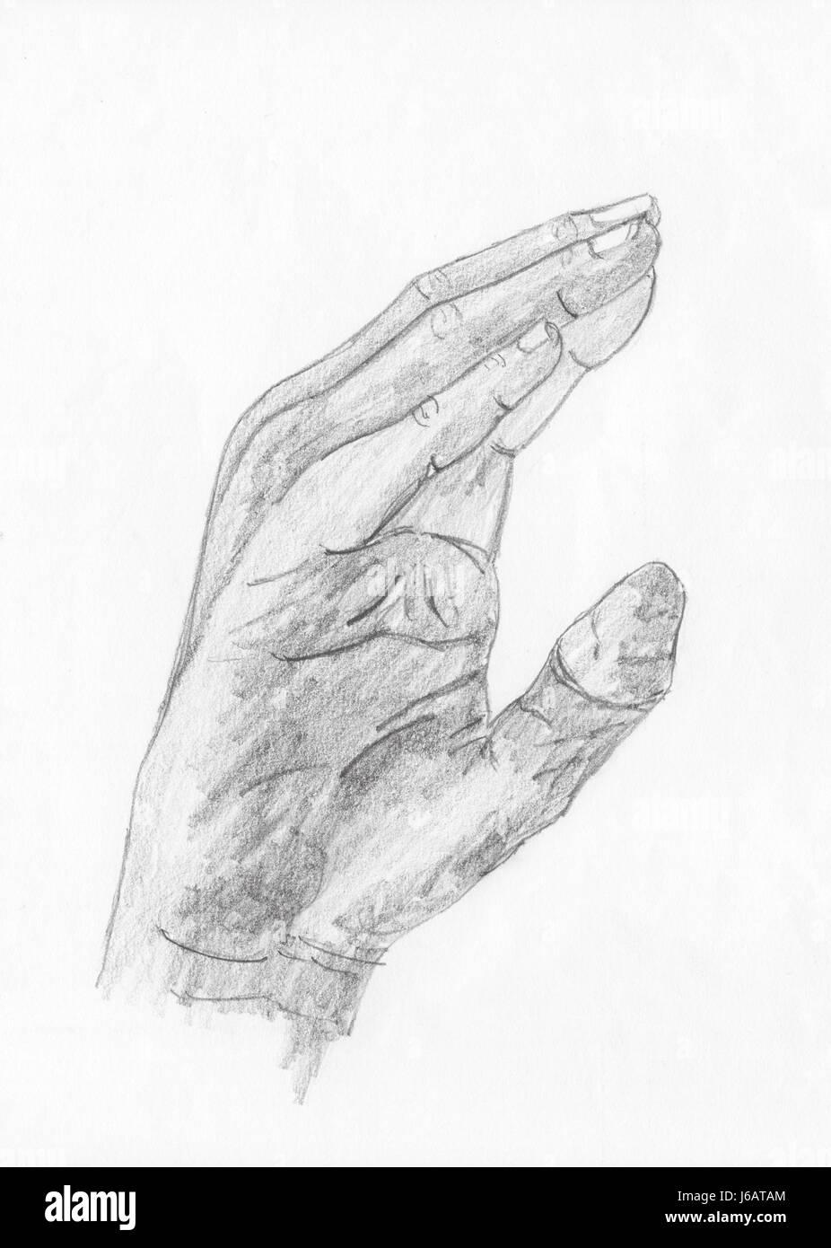 Beste Anatomie Des Fingers Der Hand Bilder - Anatomie Ideen ...