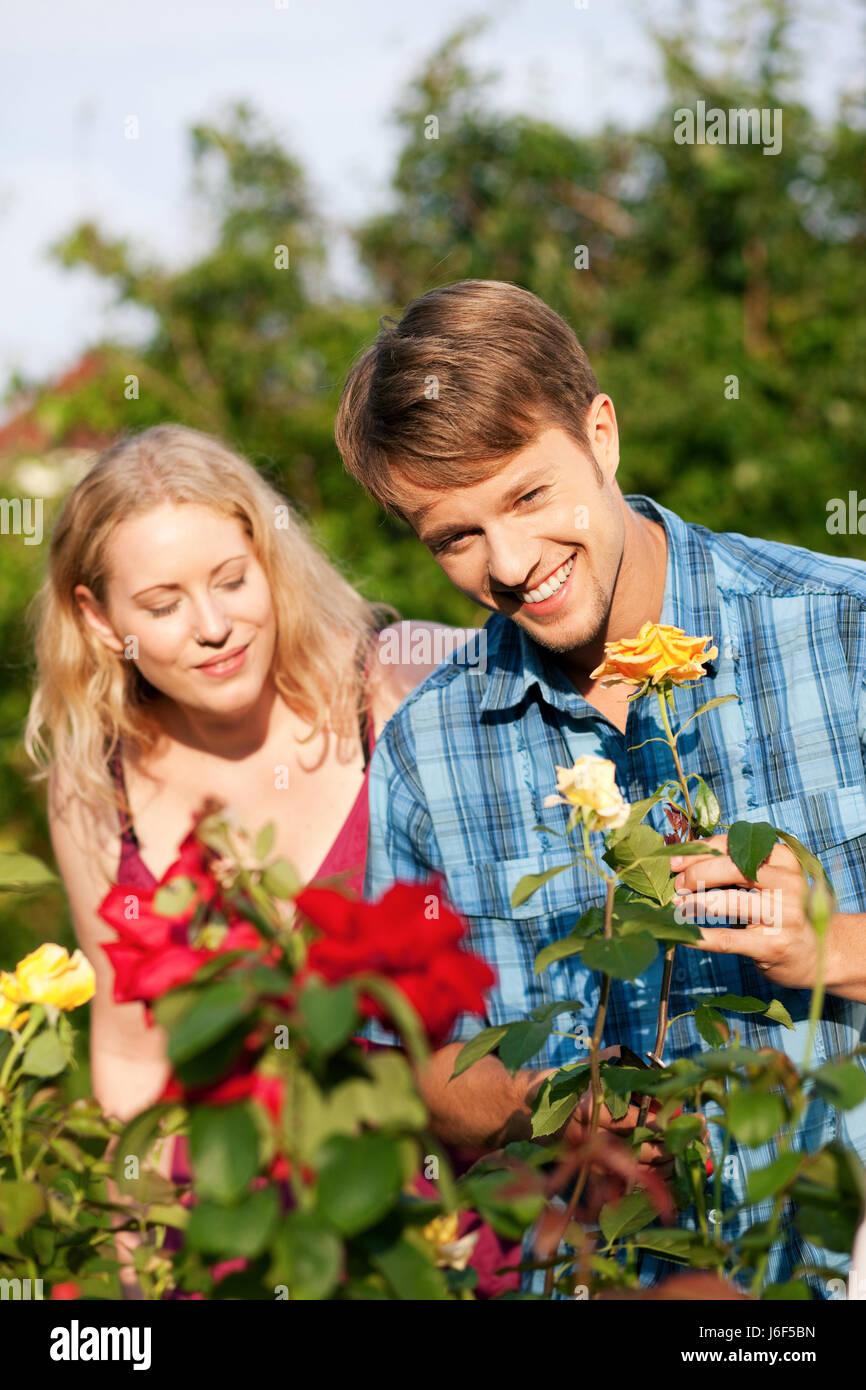 Garten - Gartenarbeit im Rosenkranz Stockfoto